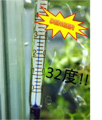 水温32度
