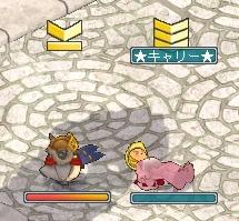 (o゚c_,゚o)プ♪