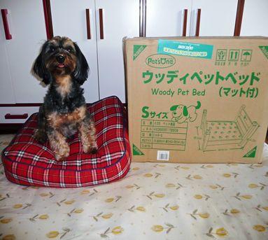 あゆちゃんのベッド1