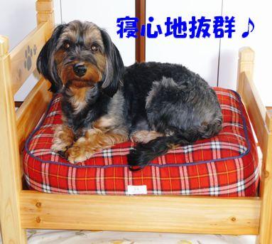 あゆちゃんのベッド6