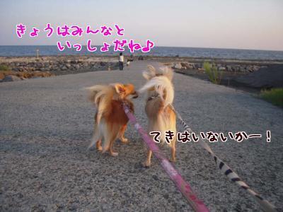 kZoeYh_l.jpg