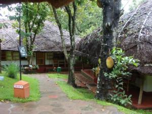 アーユルヴェーダとカラリパヤットゥ