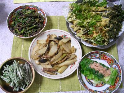 0904028ウドとコシアブラの天ぷら、ミズのゴママヨ和え、シドケの酢味噌和え、うるいのお浸し、ウドとシイタケのバター炒め