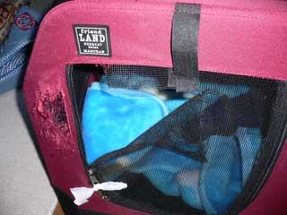 2006-1-24-022-320.jpg