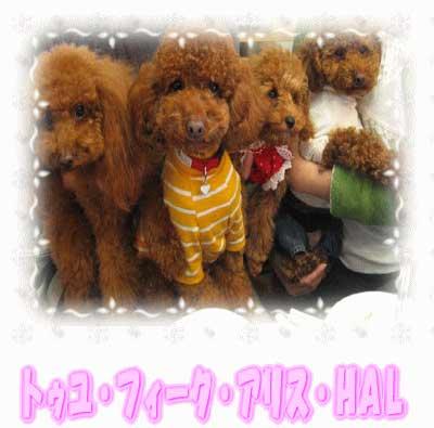 2006-12-18-006-400-3.jpg