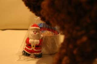2006-12-21-005-320.jpg