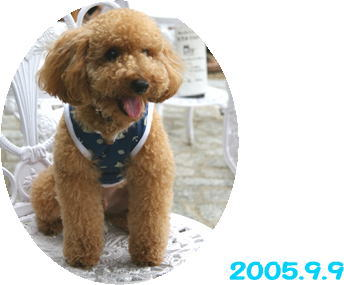 2006-9-9-001.jpg