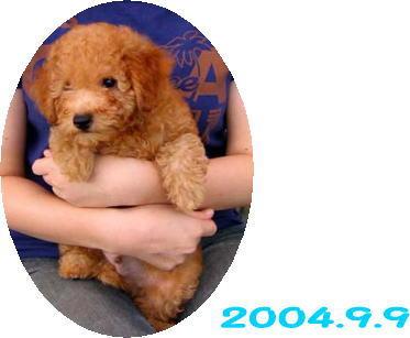 2006-9-9-002.jpg