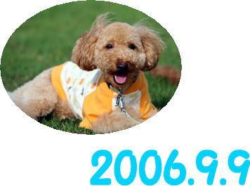 2006-9-9-004.jpg