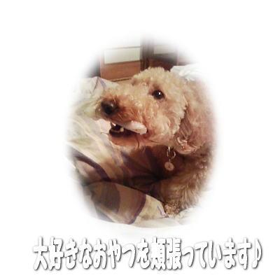 2007-1-1-.jpg