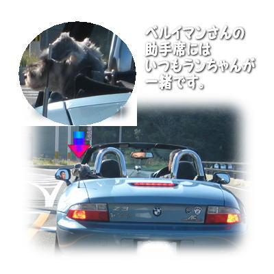 2007-11-10-.jpg