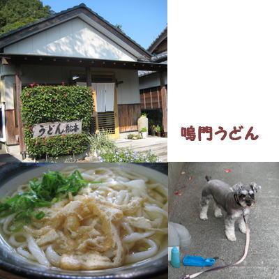 2007-11-10-4.jpg