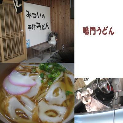 2007-11-10-5.jpg