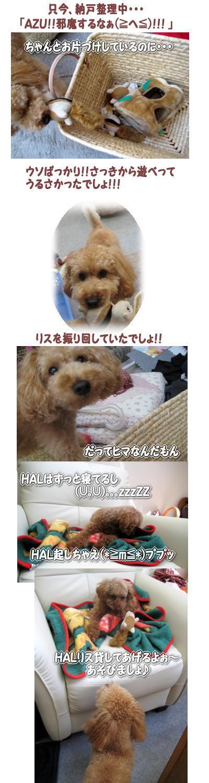 2007-11-19-1.jpg