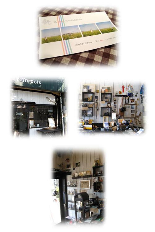 2007-11-24500.jpg