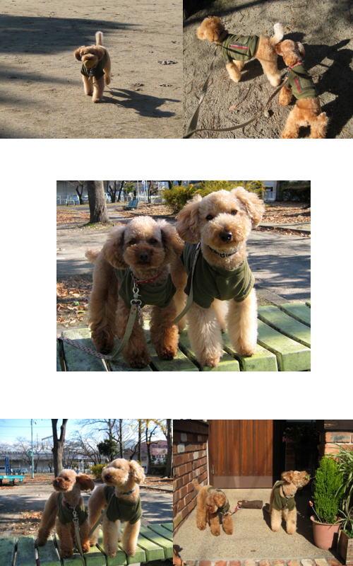 2007-12-14.jpg