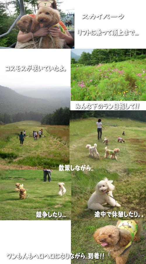2007-8-4-2.jpg