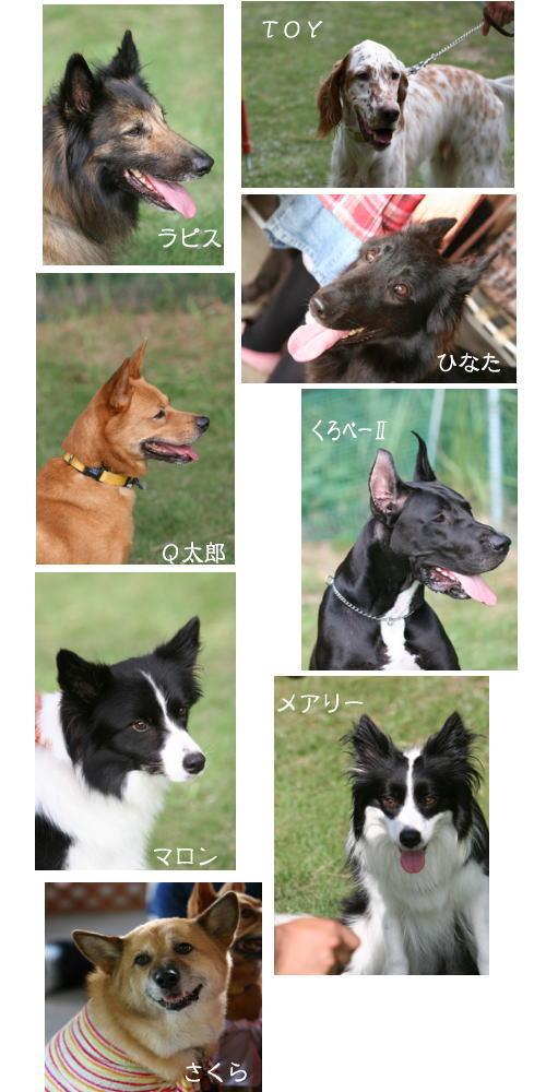 2007-9-9-12.jpg