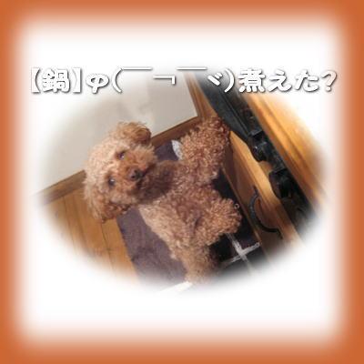2008-1-11-1.jpg