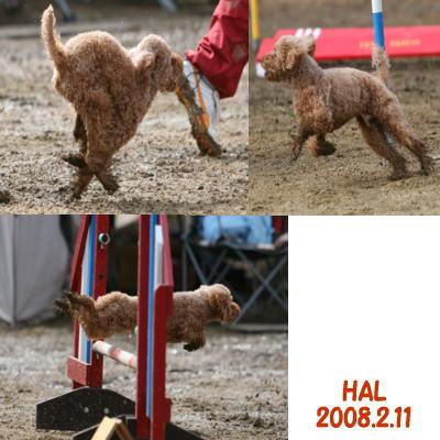 2008-2-11-02.jpg