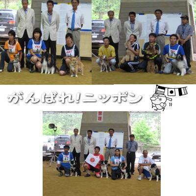 2008-6-20-1.jpg