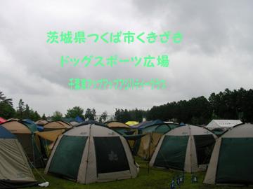 2008-5-11 022-1
