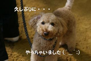 IMG_1680-320.jpg