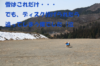 IMG_2478-320.jpg