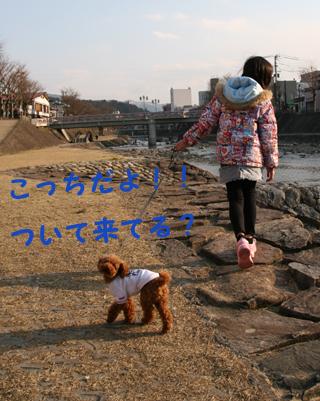 IMG_2548-.jpg