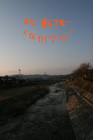 IMG_2581-320.jpg