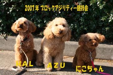 IMG_7778-360.jpg