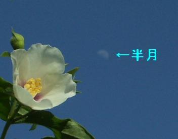 09june01m051.jpg