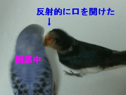 09june18017.jpg
