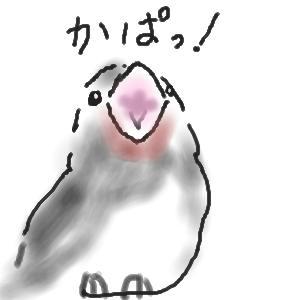 09june_junpe1.jpg