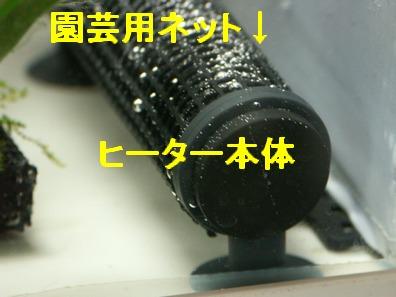 09may07001.jpg
