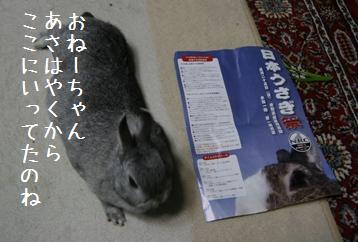 20050525_1.jpg