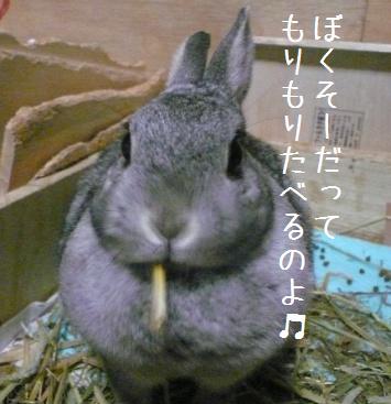 20080105_2.jpg
