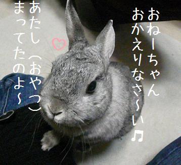 20080107_4.jpg