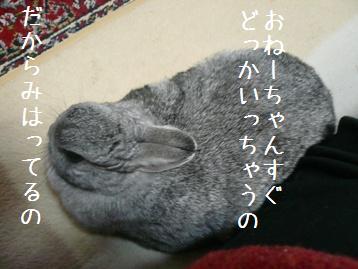 20080112_4.jpg