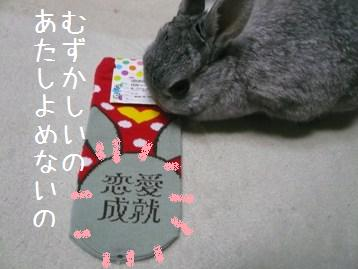 20080114_1.jpg