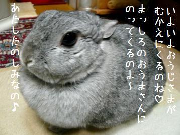 20080114_2.jpg