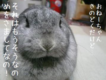 20080114_3.jpg