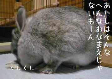 20080122_2.jpg