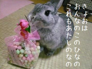 20080303_23.jpg