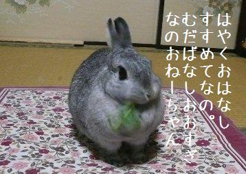 20080306_15.jpg