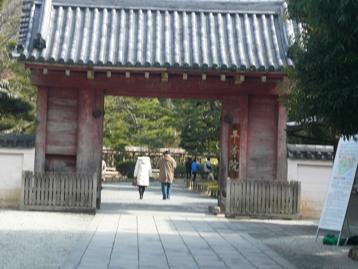 20080306_3.jpg