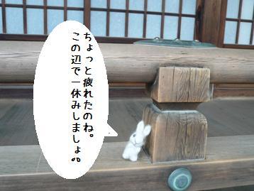 20080306_5.jpg
