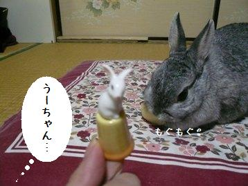 20080314_11.jpg