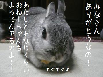 20080314_16.jpg