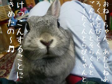 20080314_17.jpg